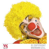 Peruca Clown Simpatic