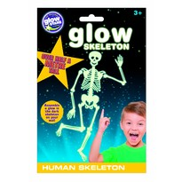 The Original Glowstars Co Schelet uman fosforescent