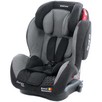 Scaun auto Georgia cu Isofix si Top Tether Gri