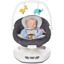 Graco Balansoar Move With Me Wren