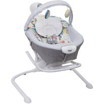 Graco Balansoar 2 in 1  Duet Sway Patchwork
